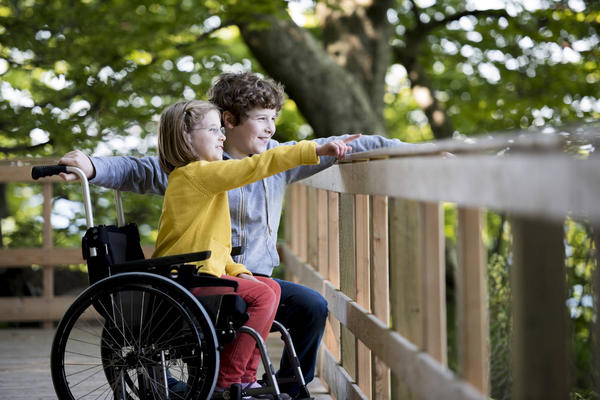 Special Needs Law Blogs